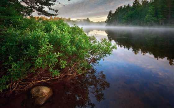 река, лес, утро