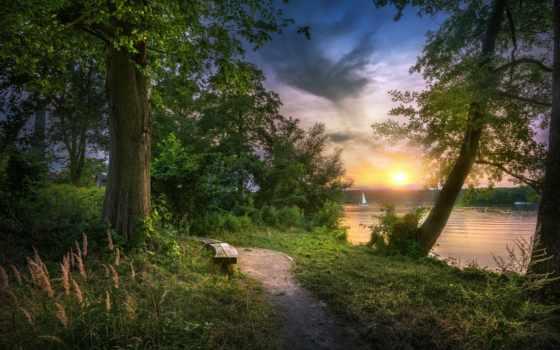 park, озеро, дерево, tapety
