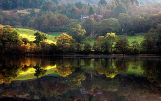 природа, река, лес
