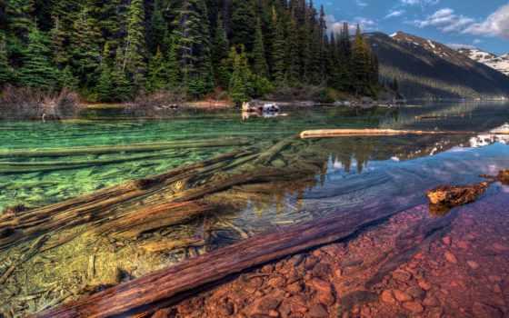озеро, чистое, кристально, канаде, смешные, анекдоты, находится, невероятно, истории, пятнистое,
