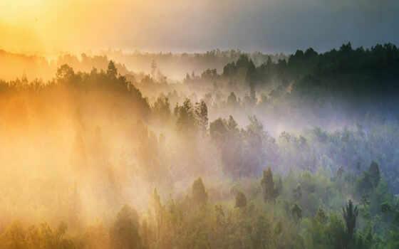 fore, восход, winter, утро, свет