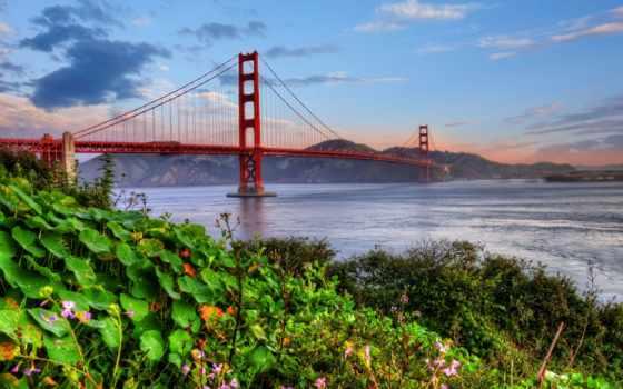 мост, gate, золотистый Фон № 135336 разрешение 2560x1600
