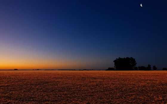 поле, landscape, ночь