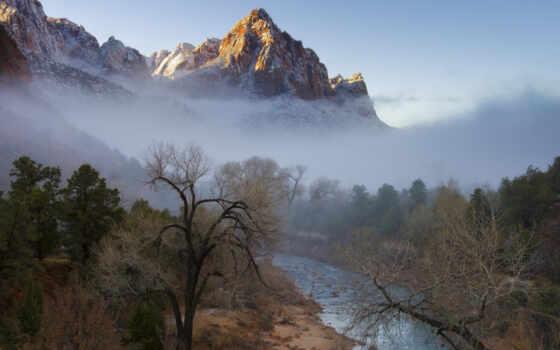 лес, река, деревя, туман,