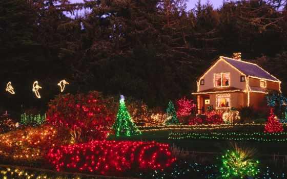christmas, holiday, free, merry, yeni, yıl, için, oregon, noel, lights, navidad, resimleri, acres, shore, state, park, yılbaşı,