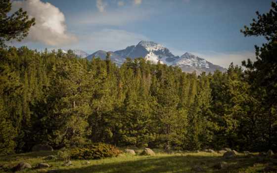 national, park, colorado, гора, скалистый, маунтин, роки, город, trees, горы,