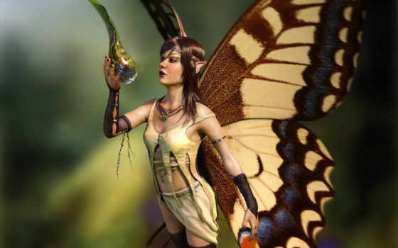 fairy, concept