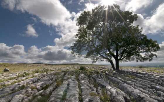 пейзаж, камни