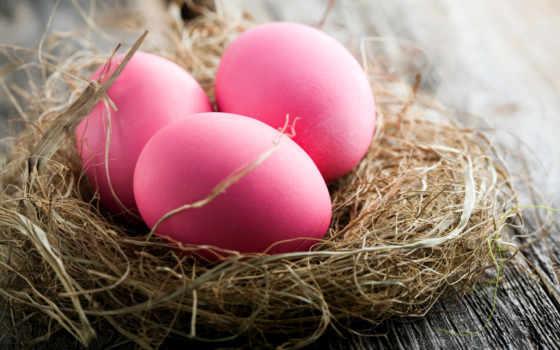 яйца, easter, пасхальные, праздники, nest, розовый, картинка, пасху, color, розовые,