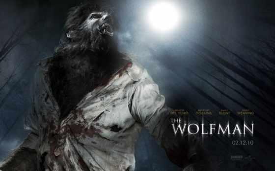 werewolf, волк, мужчина