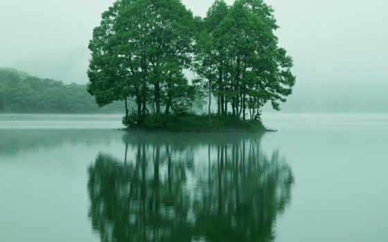 деревя, воде, небо
