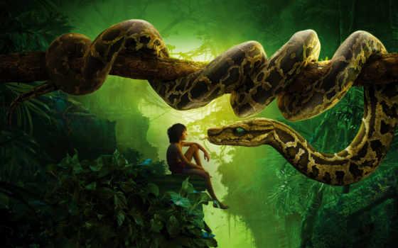 jungle, книга, kaa, libro, selva, дерева, mowgli, yosemite, ствол,