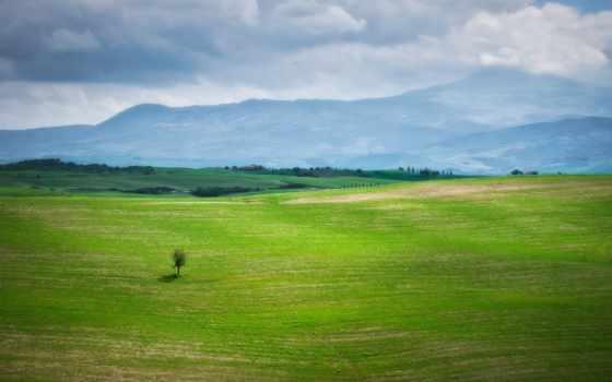 горы, природа, трава