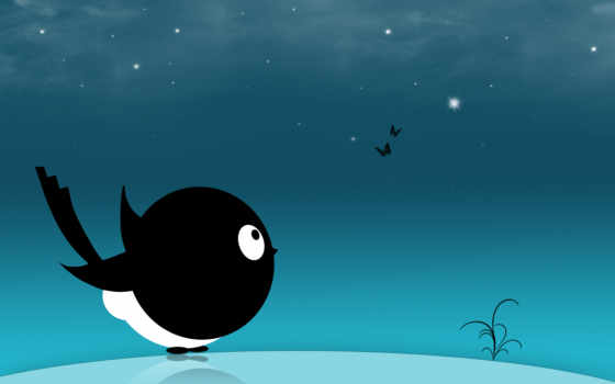 black, desktop, iphone, птица, free, case,