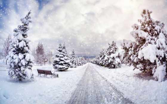 winter, скамейка, коллекция