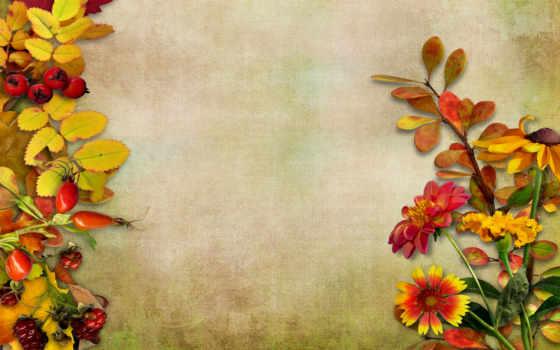 листва, цветы, ягоды
