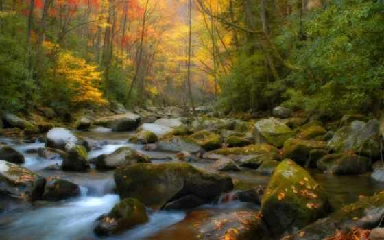 природа, best, ручей, красивые, scenery, осень, images,