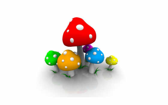 mushrooms, colorful,