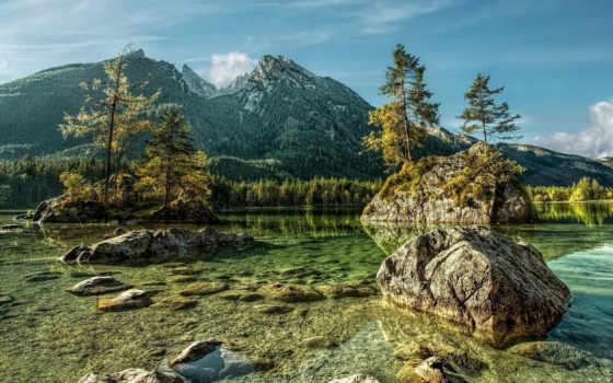 adbhut, pine, горы
