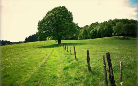 free, pour, votre, agence, terrains, maison, кёльна, high,