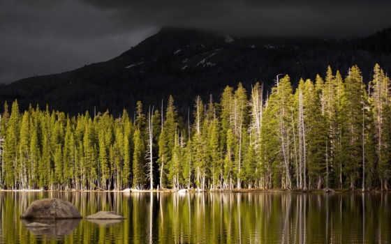 лес, осень, озеро, мрачные, берег, вулкан, гора, top,