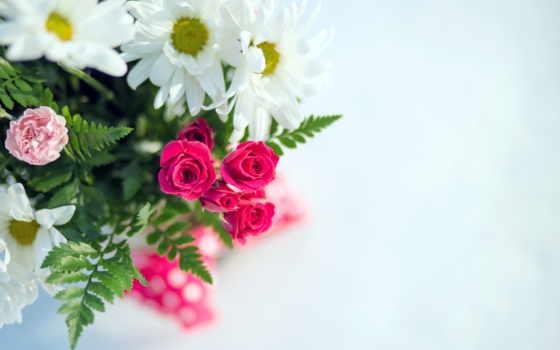 cvety, красивые, букеты, букет, розы, цветов, цветами, бесплатные, картинка, ромашки,