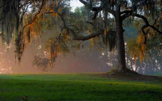 georgia, flickr, трава, photos, восход, закат, clairvoyant, остров,