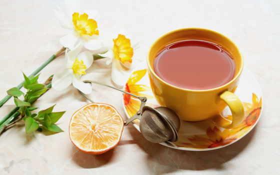 чая, нов, нашем
