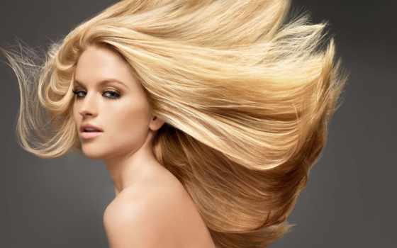 блонд, пшеница, волос