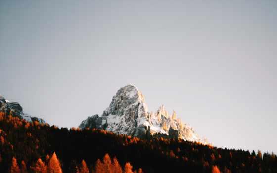 гора, лес, снег