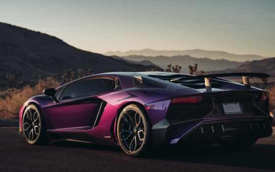 purple, aventador, stand, магазин, интернет, low, lamborginya, цена, фон, urus