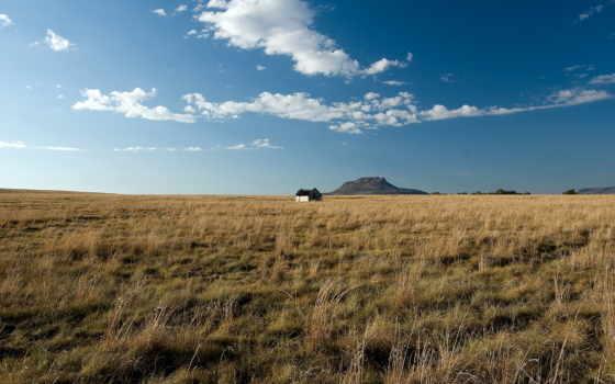 одинокий, house, lodge, степи, дома, margin, под, небом, посреди, голубым, далеко,