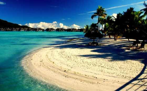 райское, пальмы, пляж, tropics, отдых, спа, место, tropical, небо, природа, azure,