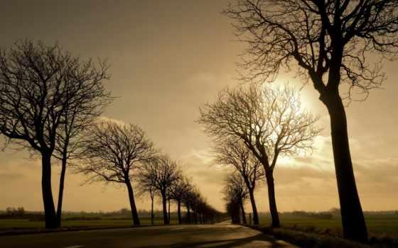 free, страница, ноябрь, thomascow, закат,