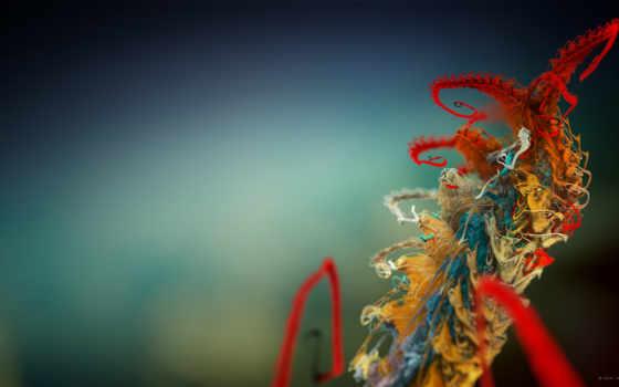 plant, micro