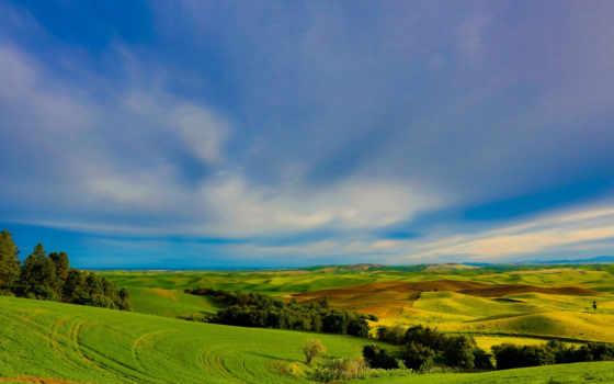природа, нов, landscape