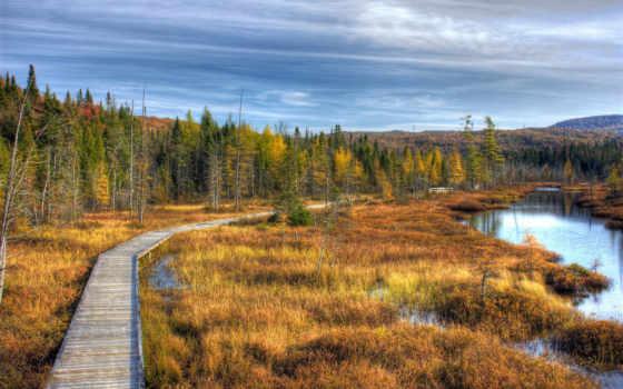 quebec, hdr, канада, natur, kanada, gras, природа, landschaftsfoto, изображение, scenery,