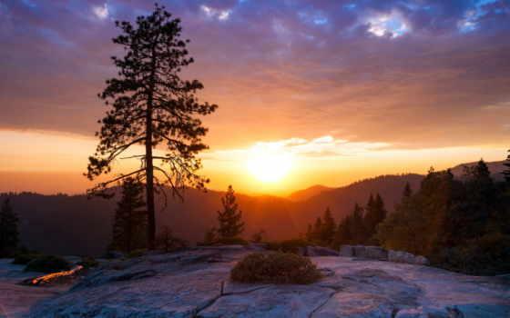 горы, закат, сосны, landscape, pine, sun, пейзажи -,