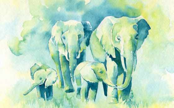 слон, watercolor, baby, mom, print, dad, art, питомник, живопись, katrina,