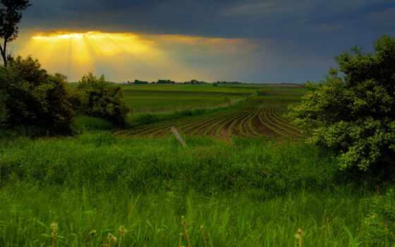 трава, magnetic, company, region, visible, land, intel, небо, группа
