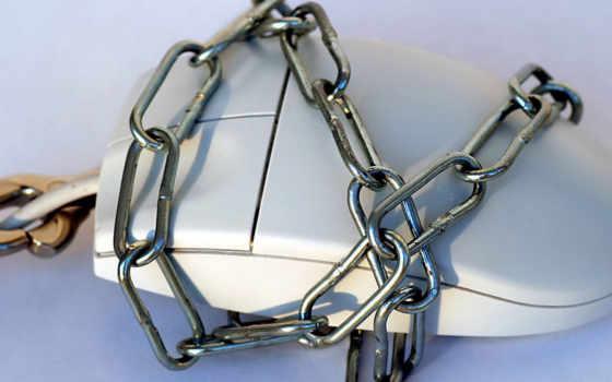 seguridad, интернет, los