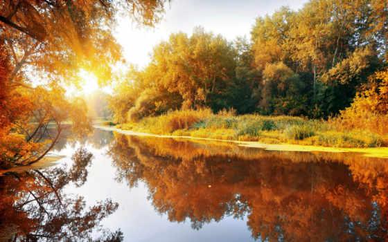 осень, река, природа, красиво, рыбалка, лес, отражение, отдых,