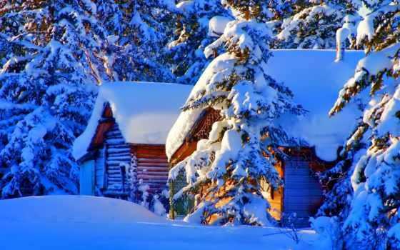 дома, winter, лесу, красивые, природа, снег, ёль, зимой, house, лес, lodge,