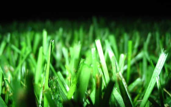 зеленые, широкоформатные, подборка