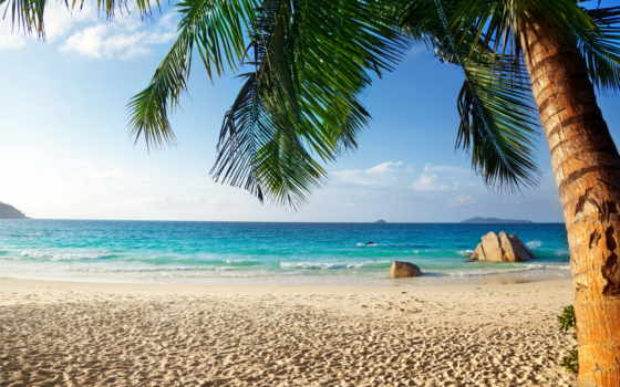 пляж, tropics, природа, summer, ocean, рай, море, tropical, пальмы,