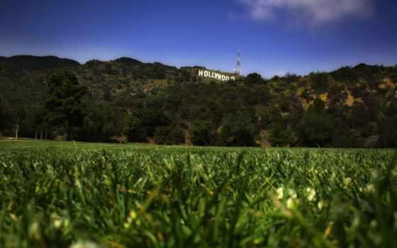 голливуд, sign, трава, газон, надпись, around,