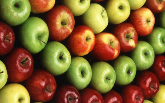 apples, apple, are, suppliers, that, iphone, california, safarjan,