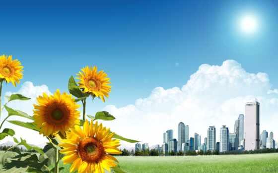 love, scenery, sun