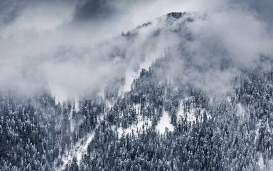 сочи, winter, поляна, красная, russian, снег, landscape, природа, гора, краснодарский, зимой,