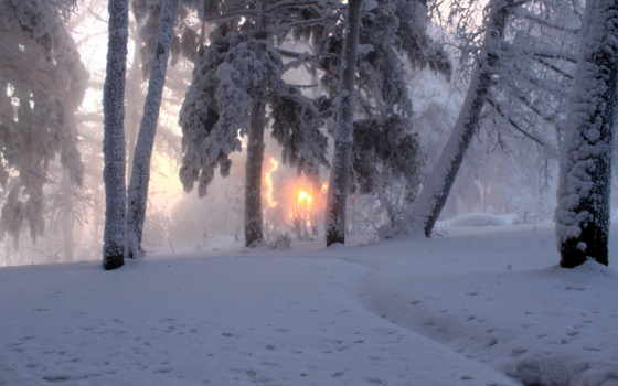 winter, снег, sun Фон № 53003 разрешение 3872x2582